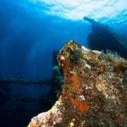 The Liberty Wreck in Tulamben thumbnail
