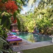 Arjuna-Homestay-Swimmingpool thumbnail