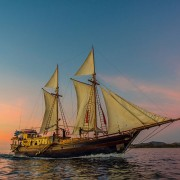 Dive-Liveaboard-in-Indonesia-with-Dive-Concepts thumbnail