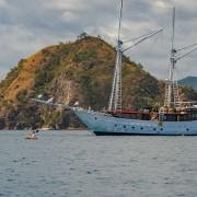 Discover Komodo on a Luxury Cruise thumbnail