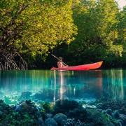 Enjoy Kayaking on Crystal Clear Water thumbnail