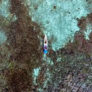 Get Free access to Kayaks thumbnail