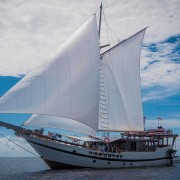 Ideal for a Private Cruise in Banda Sea thumbnail