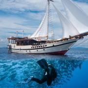A Perfect Dive Liveaboard in Banda sea thumbnail