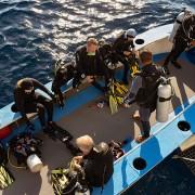Scuba Diving Komodo Cruise Dive Concepts thumbnail
