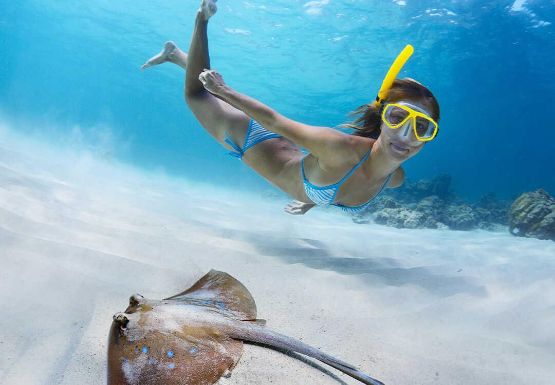 Snorkeling Pemuteran Tab