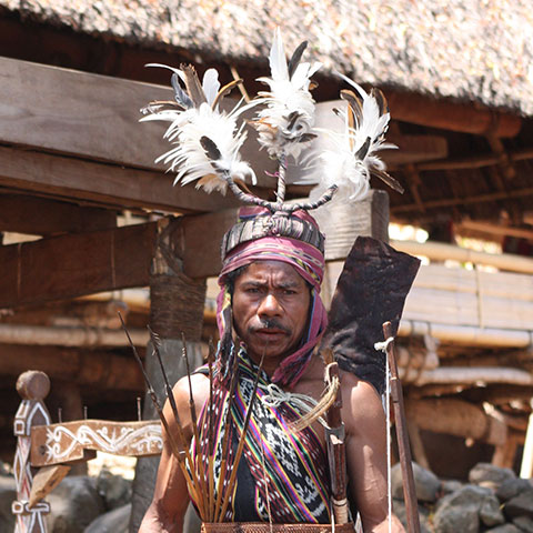 Alorese Tribes