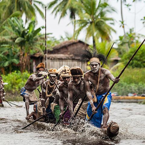 Inhabitants of the swampy mangroves