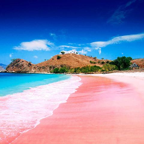 Komodo Pink Beach