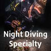 Night Diving Specialty Course