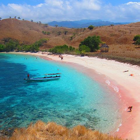 Pantai Merah Komodo
