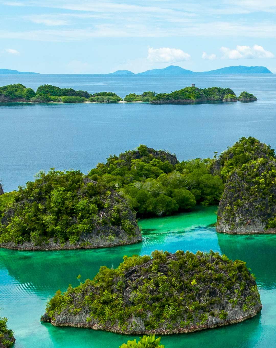 Raja Ampat Fam Islands