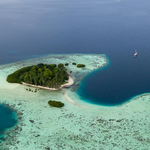 Untouched Islands